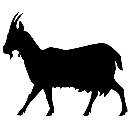 Goat black vector silhouette on a farm