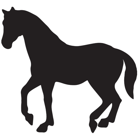 rearing up horse fine vector silhouette and outline - graceful black stallions Illustration