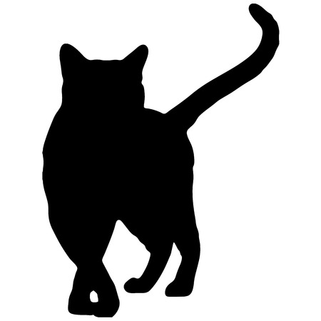 Silhouette of a black cat. Vector illustration