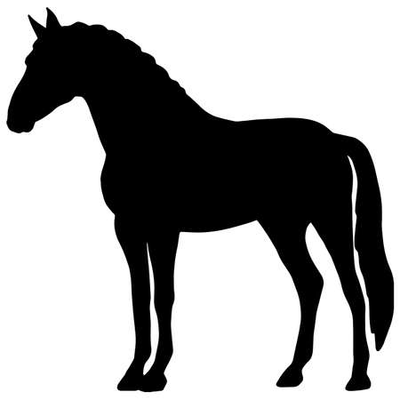 Icon of horse silhouette. Black illustration of a horse.