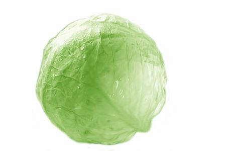 Head of cabbage.