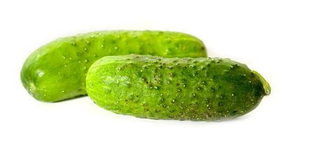One pair of green cucumbers. Stock Photo