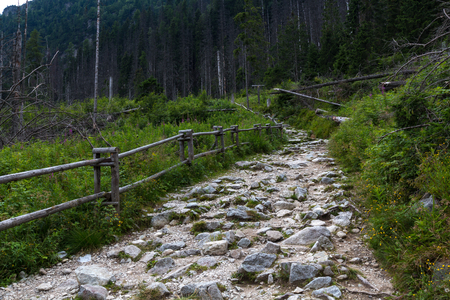 dull: Dull sky in mountains, stone path Stock Photo