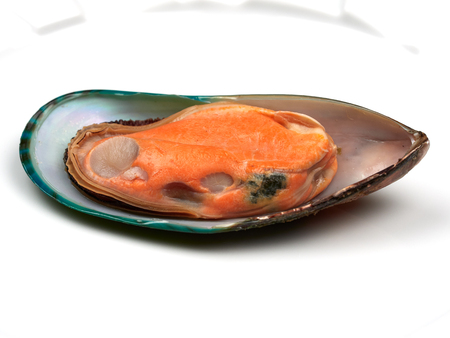 A fresh mussel with orange meat isolated on white