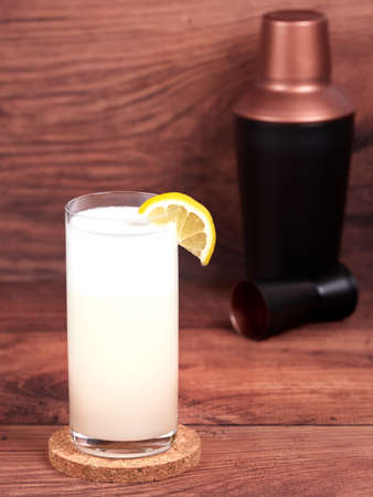 Gin fizz: a cocktail made with gin, lemon juice, simple syrup, egg white and soda water