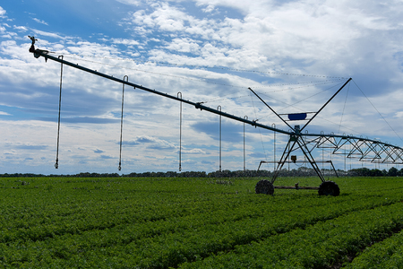 Agricultural irrigation machine irrigates, watering the field on a spring day. Agricultural irrigation machine concept.