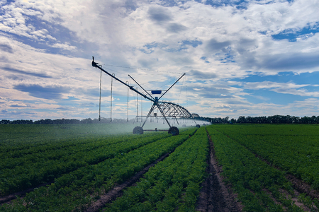 Agricultural irrigation machines are irrigated, watering the field on a hot spring day. Agricultural concepts.