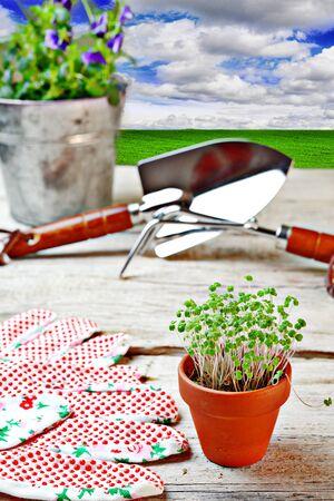 gardening tools Stock Photo - 17335375