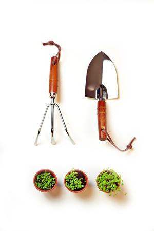gardening tools Stock Photo - 17335361