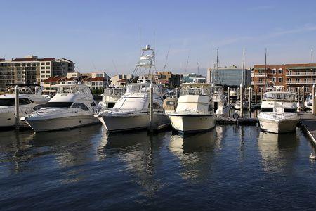 anchored: Boats anchored at Palafox Pier - Pensacola, Florida