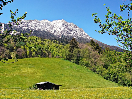 allgau: View to the Rubinger Oy near Oberstdorf and the mountain Grunten in Bavaria, Germany Stock Photo