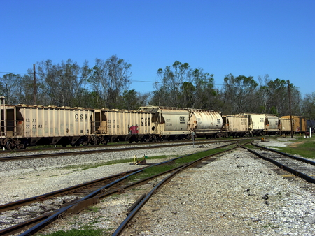 pensacola: A row of freight train cars sitting at a train yard in Pensacola, Florida