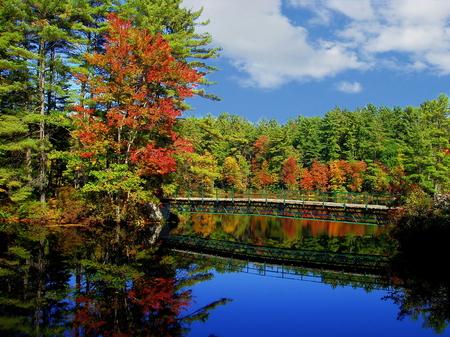Herbstfarben auf einem Teich in Concord, New Hampshire Standard-Bild - 46014694