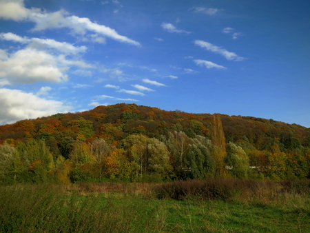 hectares: The St. Arnual meadows is a nature reserve  in Saarbrcken, Germany. The area covers 36 hectares and has been designated in 2004 as a nature reserve Stock Photo