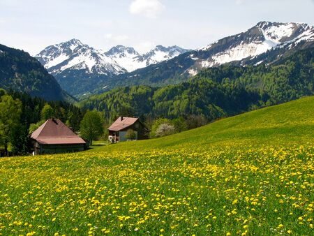 allgau: A view of Oberstdorf, a community located in the Allgau region of the Bavarian Alps in Germany