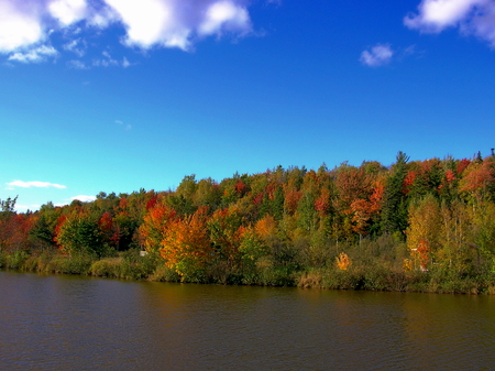 Autumn view of a lake in Mapleton Park - Moncton, NB, Canada