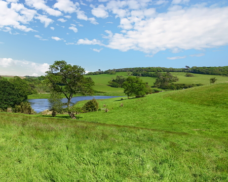 Meadow and landscape in Cornwall, England
