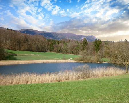 Pond and meadow with a view of the Weissenstein Range in the far background, Switzerland Standard-Bild - 117353196