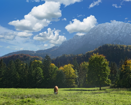 View of the Herzogstand  mountain in the Bavarian foothills of the Alps, Upper Bavaria, Germany Standard-Bild - 117353441