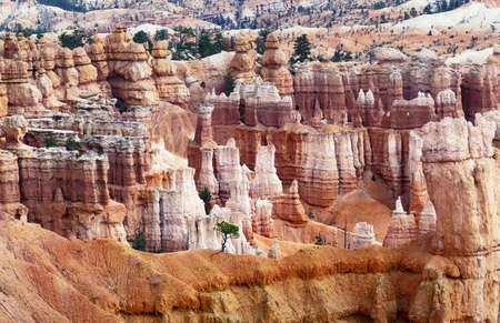 Spire-shaped rock formations in Bryce Canyon National Park, Utah, USA Banco de Imagens