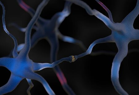 sensory receptor: Neurons in the brain transmiitting signal 3d render Stock Photo