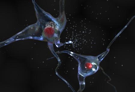 peripheral nerve: Illustration of human nerve cell on a black 3d render