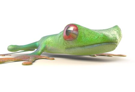 treefrog: red eyed tree frog from tropical rainforest of Costa Rica isolated on white. Beautiful green and blue treefrog is an exotic animal from the rain forest. 3d render