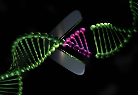 strand: DNA cut the part with a scissor 3d illustration Stock Photo