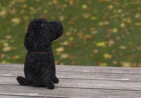 Sitting felt curly black dog 3d illustration