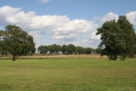 Late summer landscape with fields, meadows and trees photo