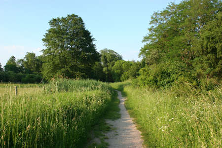 The path in the countryside spring Stock Photo - 9754307