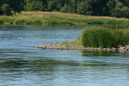 Elbe river in Saxony-Anhalt  Germany, in summer