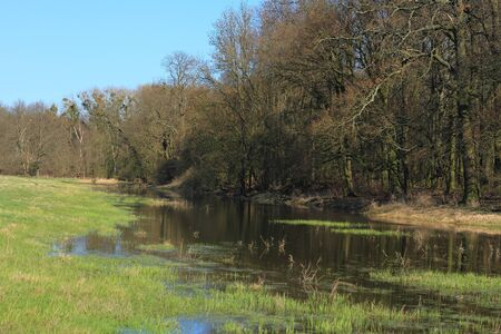 floodplain: Pond in a floodplain in early spring Stock Photo