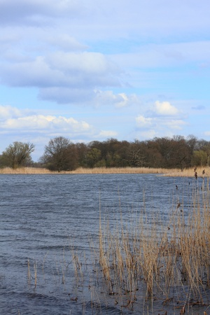 floodplain: Lake in a floodplain in early spring Stock Photo
