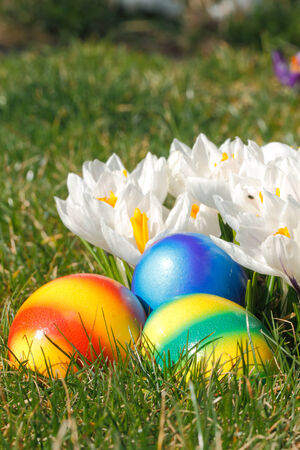 Easter eggs with flowers in a meadow Stock Photo