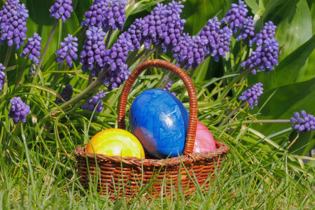 Easter eggs in a easter basket, with flowers in a meadow