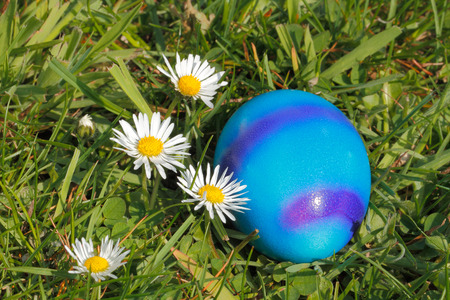 Easter egg with flowers in a meadow