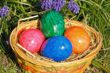Easter eggs in a easter nest, with flowers in a meadow photo