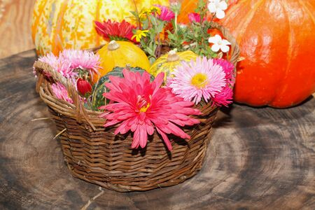 background settings: Flowers various garden flowers and ornamental gourds in a basket, table setting, place setting on a table Flowers Stock Photo