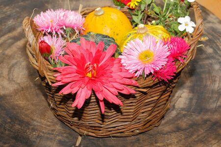 flores moradas: Flores diversas flores del jard�n y calabazas ornamentales en una cesta, ajuste de la tabla, cubierto en un vector de las flores