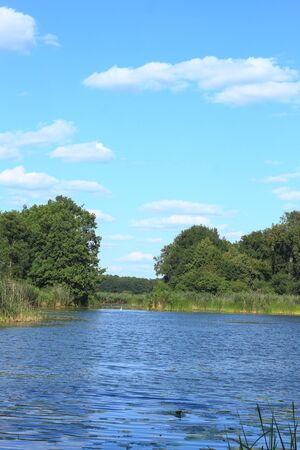 floodplain: Lake in a floodplain in summer Stock Photo