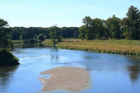 floodplain: Mulde river in summer in Saxony-Anhalt  Germany