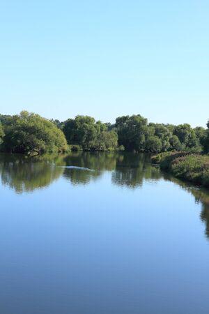 scrub grass: Mulde river in summer in Saxony-Anhalt  Germany