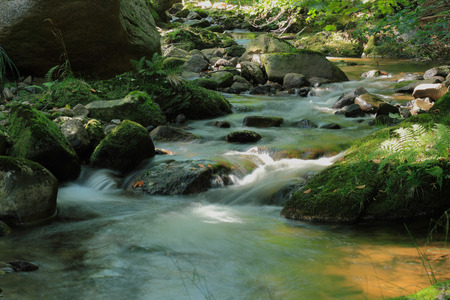 Mountain stream Ilse in the Harz National Park, in Saxony-Anhalt  Germany Stock Photo