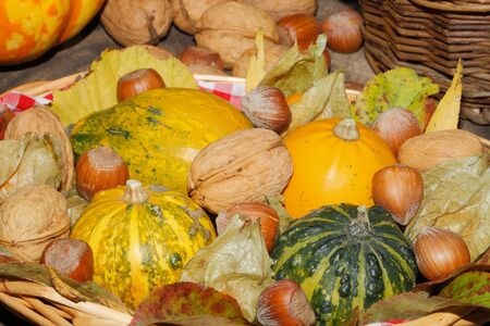 Basket with ornamental gourds, autumn leaves, various nuts and physalis on a rustic wooden board, Thanksgiving decoration