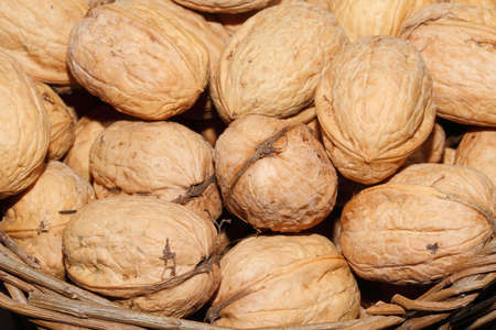 Freshly harvested walnuts in a basket Stock Photo