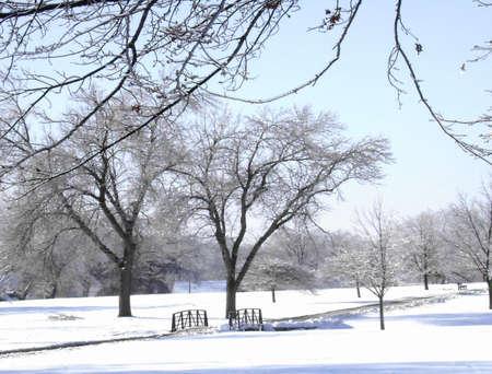 겨울 폭풍 후 공원 스톡 콘텐츠