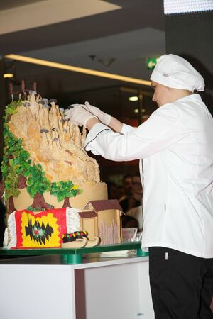 buddy: Cake with Serbian national motives at the show of Cake boss Buddy  Valastrothe star of TLC channel on 1 June 2015in shopping center Usce in BelgradeSerbiapromoting new programs and new season of the Cake boss tv show
