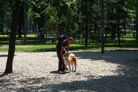 aggressiveness: Puppy of Akita Inu posing with its owner in dog park
