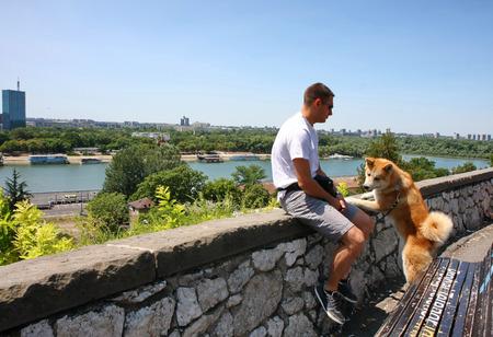 aggressiveness: Akita Inu with its owner enjoying beautiful city view Stock Photo